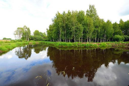Коттеджный посёлок  «Мартово» по адресу Московская обл, Волоколамский р-н, Щекотово д в 97.8км от МКАД предложения по цене от 299 000 руб.